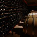 Dans quel vin investir : notre guide du débutant !